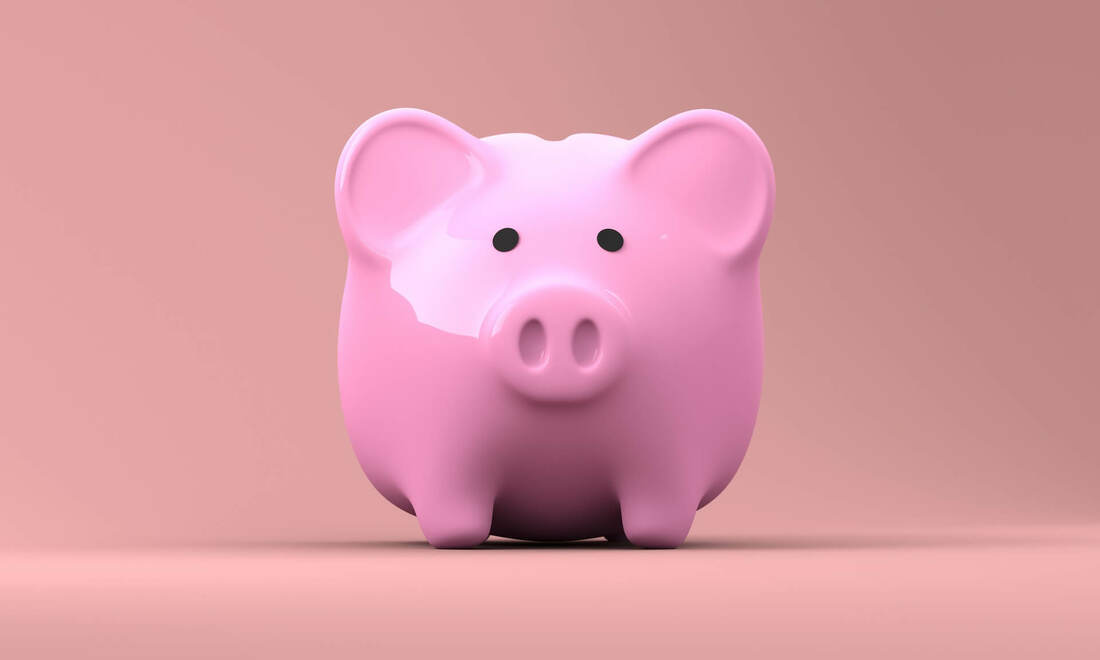 Piggy bank and a mouse - because financial advisor coaching should be viewed as an investment